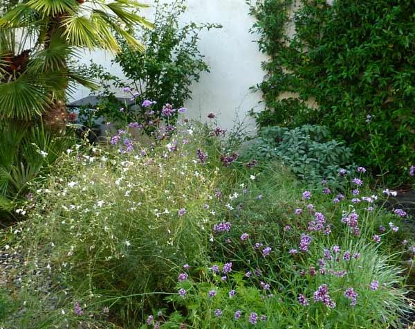 assas-jardins-mediterraneen-sec-sans-arrosage-paysagiste-entretien-creation-pelouse-gazon-graviers-bassin-fontaine-jardinerie-herault-montpellier-paves-2