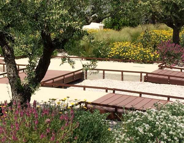Jardins secs, haut de gamme - Paysagiste à Montpellier ...