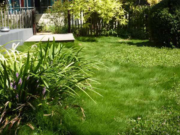 assas-jardins-mediterraneen-sec-sans-arrosage-paysagiste-entretien-creation-pelouse-gazon-graviers-bassin-fontaine-jardinerie-herault-montpellier-paves-4