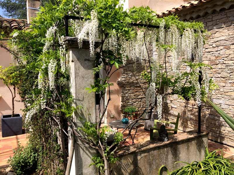 assas-jardins-mediterraneen-sec-sans-arrosage-paysagiste-entretien-creation-pelouse-gazon-graviers-bassin-fontaine-jardinerie-herault-montpellier-paves-5
