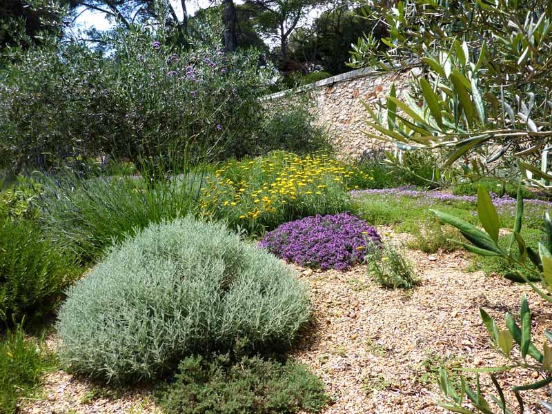 assas-jardins-mediterraneen-sec-sans-arrosage-paysagiste-entretien-creation-pelouse-gazon-graviers-bassin-fontaine-jardinerie-herault-montpellier-real-5